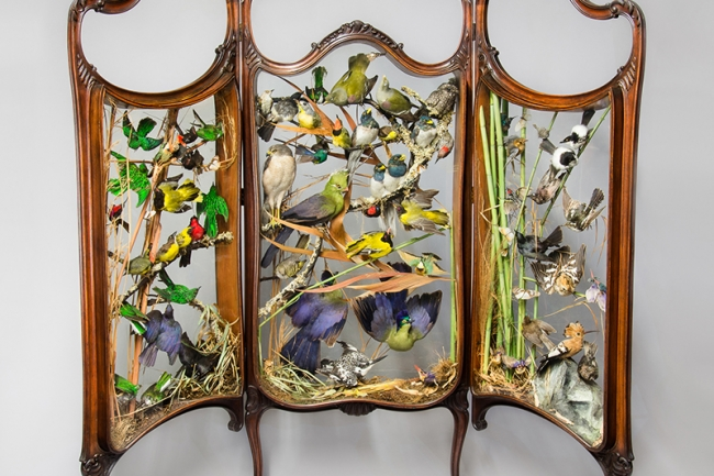 A 19th century Rowland Ward taxidermy firescreen diorama of exotic birds. Hammer price £4,900.
